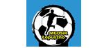 witryna - GOSW w Łopusznie